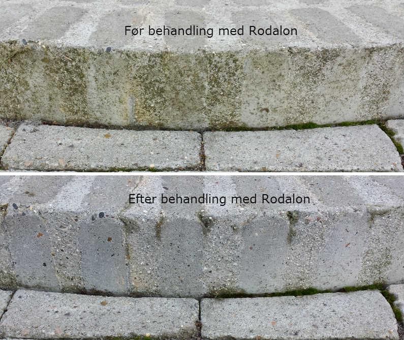 Afrensning af belægningssten: Få minutters arbejde med Rodalon, en skurebørste, vand, lidt ventetid og mere vand