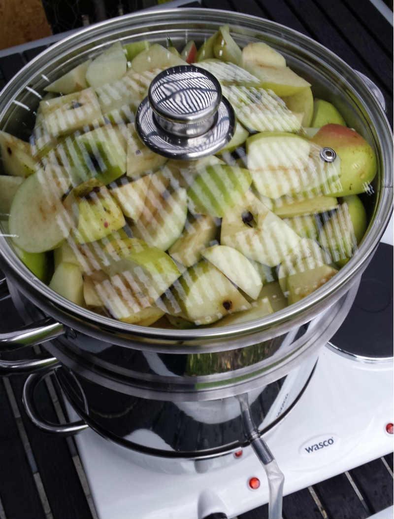 Funktion Saftkoger - klar til produktion af æblesaft