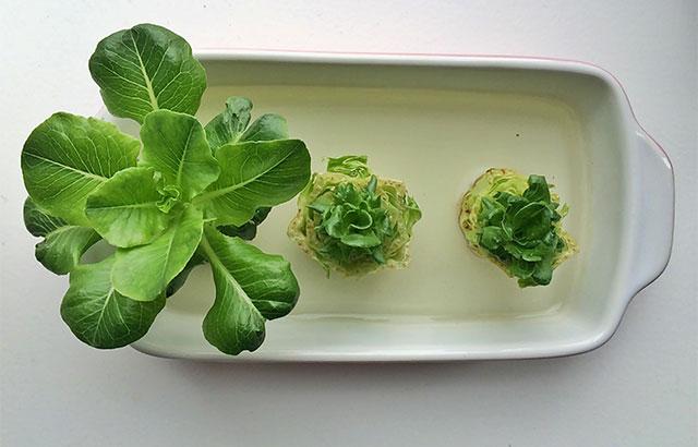 gendyrk salat