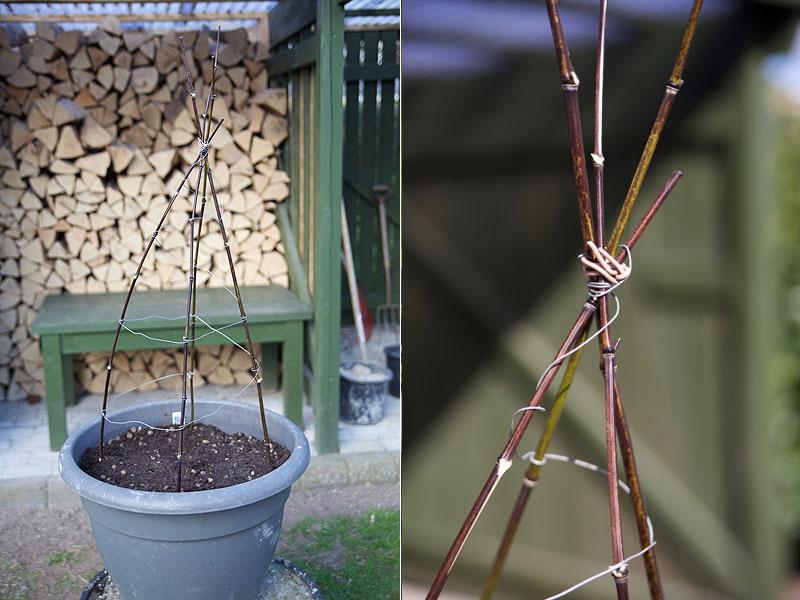 Plantestativ lavet i bambus og ståltråd - miljøvenligt og billigt.
