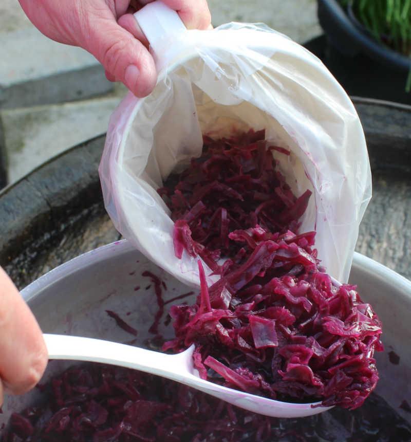 Rødkål fyldes i poser - og derefter i fryseren