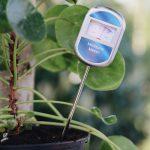 Undgå overvanding med en fugtighedsmåler til jord
