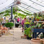 Besøg på Grennessminde økologiske gartneri
