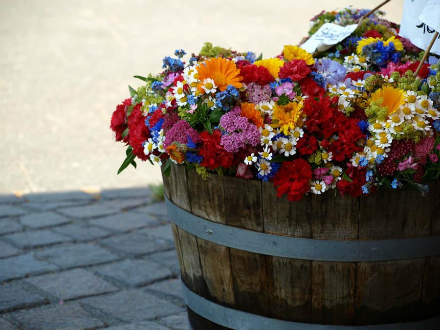 Halv whiskytønde til blomster